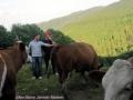 ontour008-sneumgaard-i-oestrig-2011-341