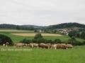ontour030-sneumgaard-i-oestrig-2011-11