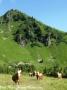 ontour105-sneumgaard-tour-2012-a