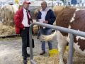 Simmental World Congress 2008 (35)