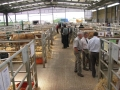 Simmental World Congress 2008 (389)