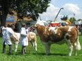 Simmental World Congress 2008 (398)