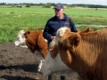 Gerard Brickley, Celtic Pedigree Herd simmental