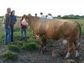 visitors025-sneumgaard-2011-20